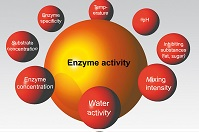 e-enzyme-illustration1-g